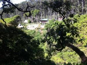 awalau farm, located in upcountry haiku, maui